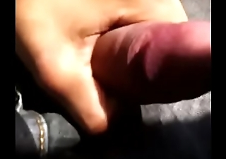 Public masturbation on the bus